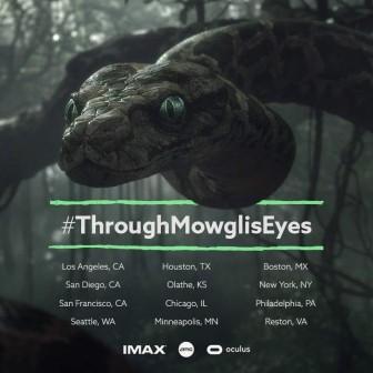 through mowglis eyes